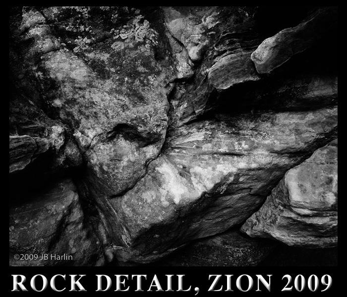 ROCK DETAIL, ZION 2009